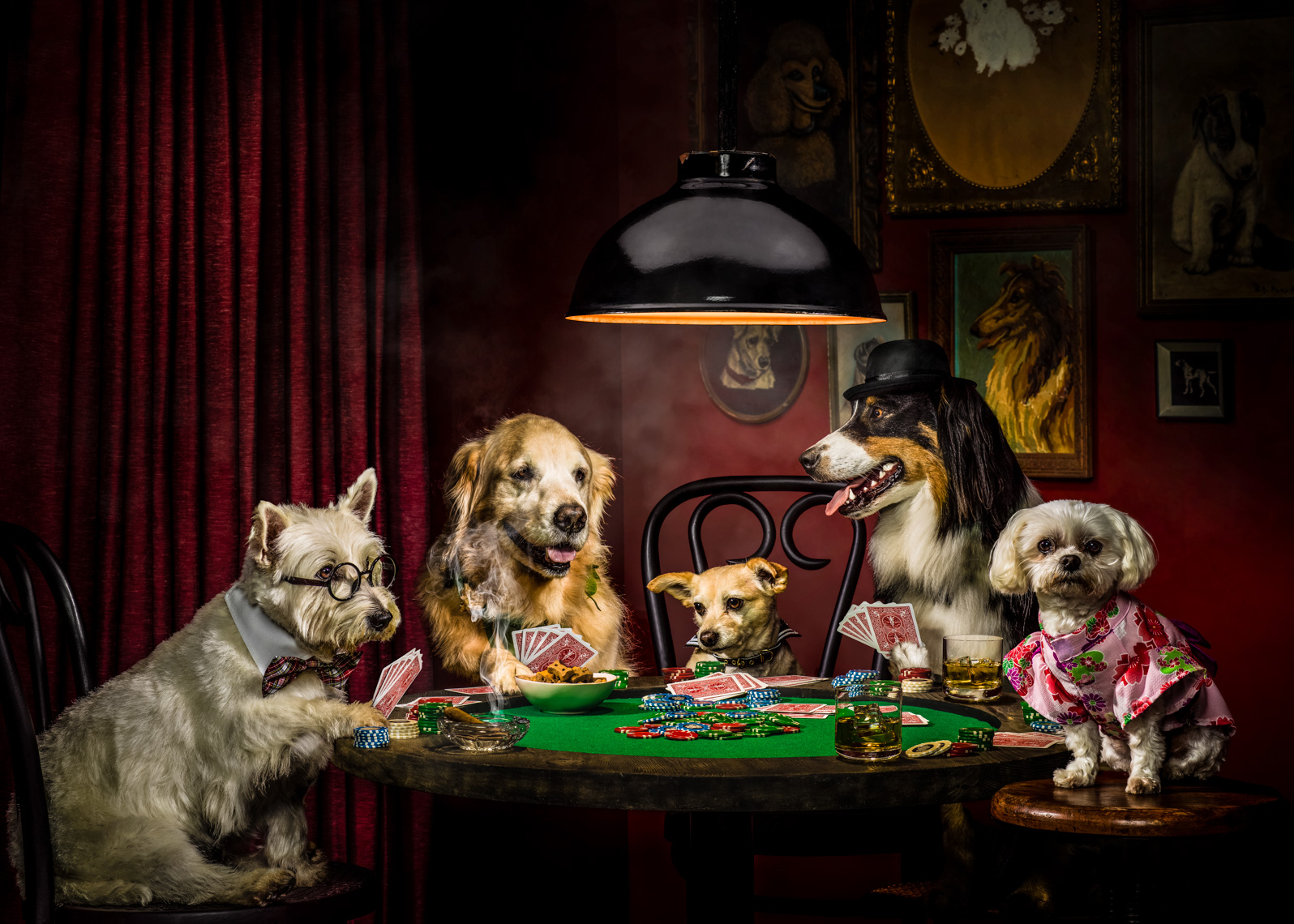 Los Angeles Photographer | Dana Hursey Photography | Quirky Photography | Dogs Playing Poker