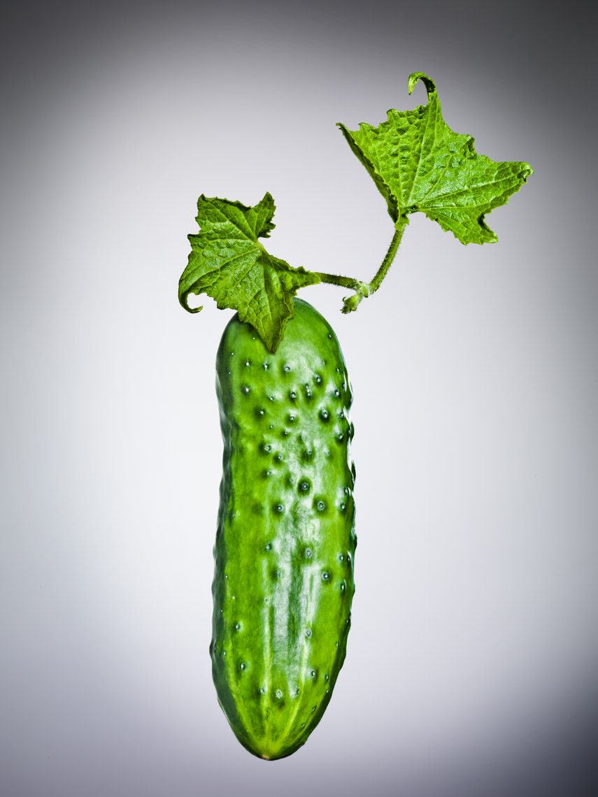 Los Angeles Photographer | Dana Hursey Photography | Food Photography | Cucumber