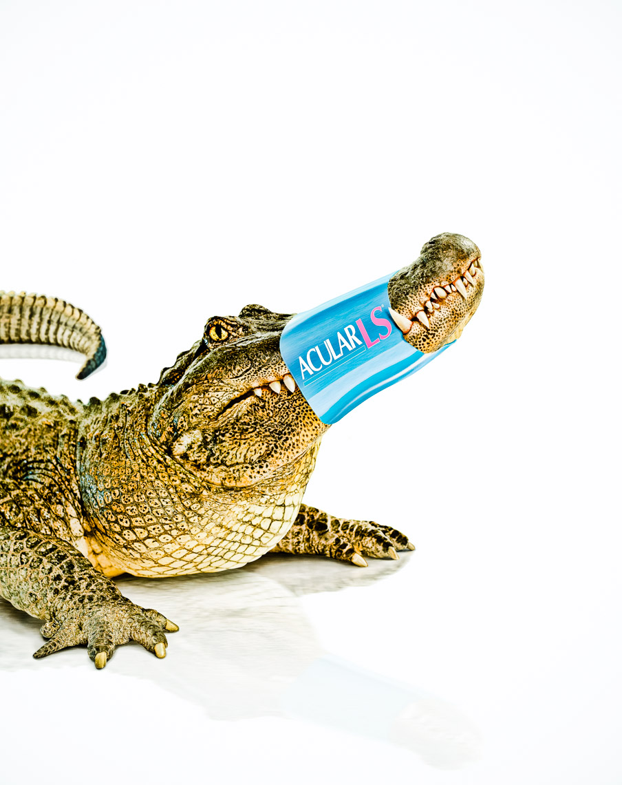 Los Angeles Photographer | Dana Hursey Photography | Conceptual Photography | Alligator Crocodile