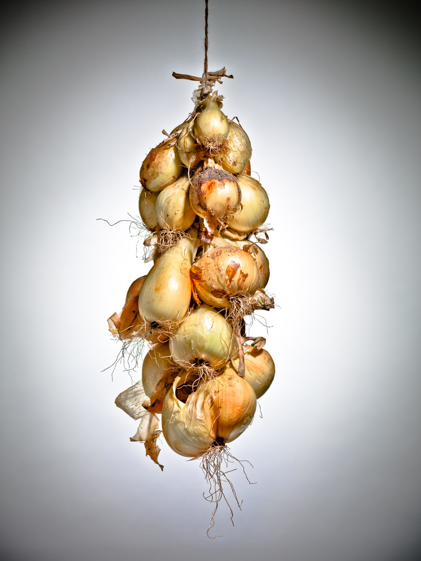 Los Angeles Photographer | Dana Hursey Photography | Food Photography | Onions